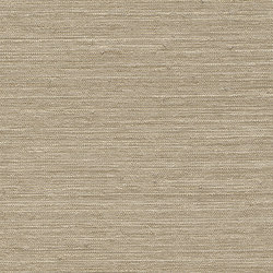 Vista 5 213880 | Drapery fabrics | Rasch Contract