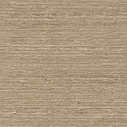 Vista 5 213910 | Drapery fabrics | Rasch Contract