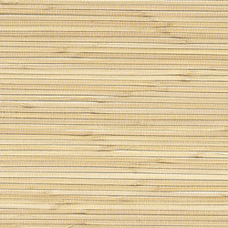 Vista 5 215495 | Wall coverings / wallpapers | Rasch Contract