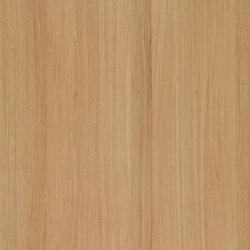 Shinnoki Natural Oak | Wand Furniere | Decospan