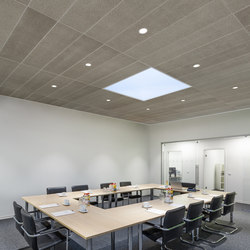 OWA Unique | Ceiling systems | OWA