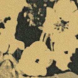Chiaroscuro Wall - Bronzo | Wandbeläge / Tapeten | Rubelli