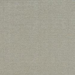Soie Cameleon - Argento | Vorhangstoffe | Rubelli