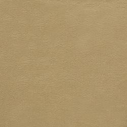 Wong - Sabbia | Tissus | Rubelli