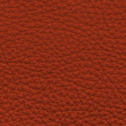 Count Comfort 86100 Terracotta | Natural leather | BOXMARK Leather GmbH & Co KG