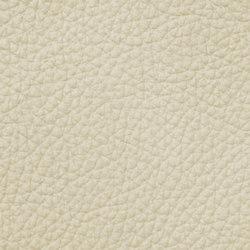 Count Prestige 14964 Smoke | Cuir | BOXMARK Leather GmbH & Co KG