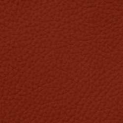 Count Prestige 34113 Ginger | Natural leather | BOXMARK Leather GmbH & Co KG