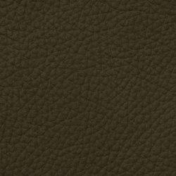 Count Prestige 64120 Olivegreen | Vera pelle | BOXMARK Leather GmbH & Co KG