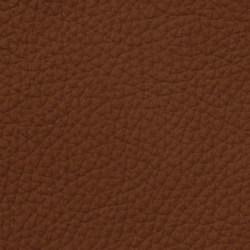 Count Prestige 84112 Reddishbrown | Natural leather | BOXMARK Leather GmbH & Co KG