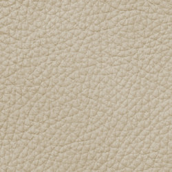 Mondial 18496 Ivory | Natural leather | BOXMARK Leather GmbH & Co KG