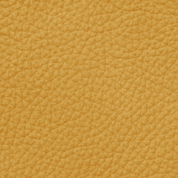 Mondial 28503 Saffron | Natural leather | BOXMARK Leather GmbH & Co KG