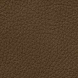 Mondial 88233 Truffle | Natural leather | BOXMARK Leather GmbH & Co KG
