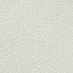 Royal 19124 Arctic | Vera pelle | BOXMARK Leather GmbH & Co KG
