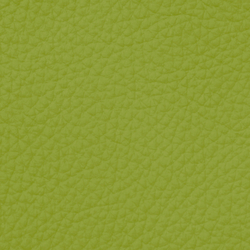 Royal 69200 Pistachio | Natural leather | BOXMARK Leather GmbH & Co KG