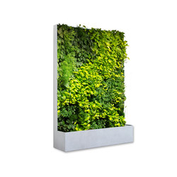 Grüne Wand® Pocket Edition 164 | Space dividers | art aqua