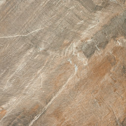Fossil Brown | Tiles | ABK Group