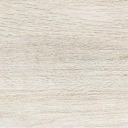 Focus White | Platten | ASCOT CERAMICHE