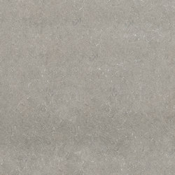 Limewalk Grey Out | Ceramic tiles | ASCOT CERAMICHE