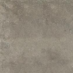 Limewalk Greige | Ceramic tiles | ASCOT CERAMICHE