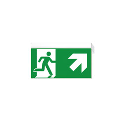 Ikus2211-P | Emergency lighting | Daisalux