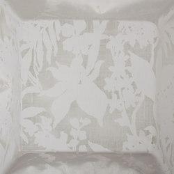 Morgana natur | Curtain fabrics | Equipo DRT
