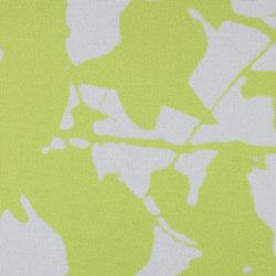 GLADE - 91 | Panel glides | Création Baumann