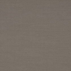 SHINE MEDIUM - 356 | Panel glides | Création Baumann