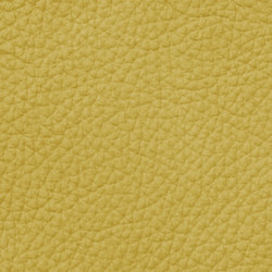 Mondial C 28505 Broomyellow | Cuero natural | BOXMARK Leather GmbH & Co KG