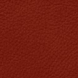 Mondial C 38059 Rougecorail | Natural leather | BOXMARK Leather GmbH & Co KG