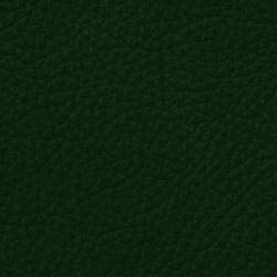 Mondial C 68500 Ivygreen | Vera pelle | BOXMARK Leather GmbH & Co KG