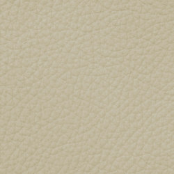 Royal C 19161 Ivory | Natural leather | BOXMARK Leather GmbH & Co KG
