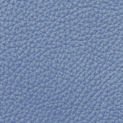 Royal C 59140 Sky | Vera pelle | BOXMARK Leather GmbH & Co KG