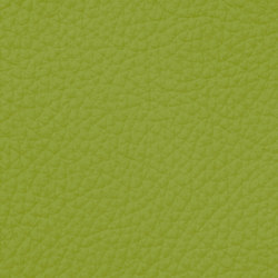 Royal C 69200 Pistachio | Naturleder | BOXMARK Leather GmbH & Co KG