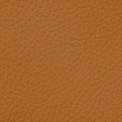 Royal C 89180 Gold | Cuero natural | BOXMARK Leather GmbH & Co KG