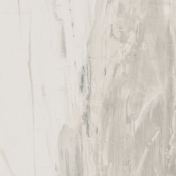 Petrified Wood White | Tiles | ASCOT CERAMICHE