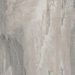 Petrified Wood Grey | Tiles | ASCOT CERAMICHE