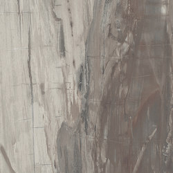 Petrified Wood Musk | Tiles | ASCOT CERAMICHE