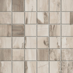 Petrified Wood Beige Mix | Baldosas de cerámica | ASCOT CERAMICHE