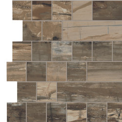 Petrified Wood Brown Stick | Baldosas de suelo | ASCOT CERAMICHE