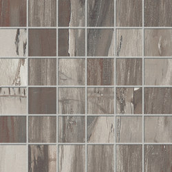 Petrified Wood Musk Mix | Tiles | ASCOT CERAMICHE