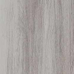 Tuxedo - TX60 | Keramik Fliesen | Villeroy & Boch Fliesen