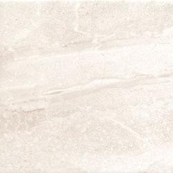 Gradual Tortora | Piastrelle/mattonelle da pareti | ASCOT CERAMICHE