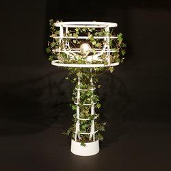 Sophie planted | Iluminación general | lasfera