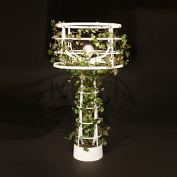 Sophie planted | Allgemeinbeleuchtung | lasfera
