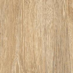 Larix Sabbia | Tiles | Ariana Ceramica