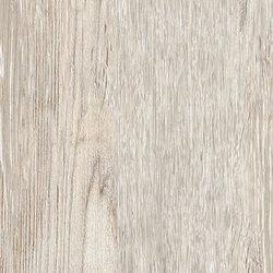 Larix Perla | Piastrelle | Ariana Ceramica