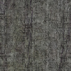 Crust Moth | Bespoke wall coverings | GLAMORA