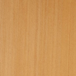 Decospan Kauri | Wand Furniere | Decospan