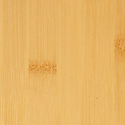 Decospan Bamboo Natural Plain Pressed | Wand Furniere | Decospan