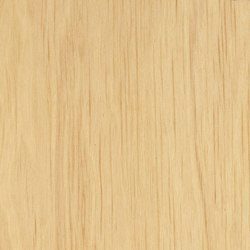 Decospan Hornbeam | Wall veneers | Decospan